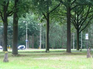 オランダ旅行⑮