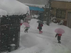 ぼやき川柳・2012.02.04