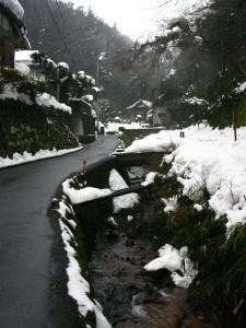 鳥取からぼやき川柳・2012.02.19