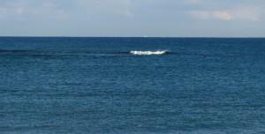 沖あいの波
