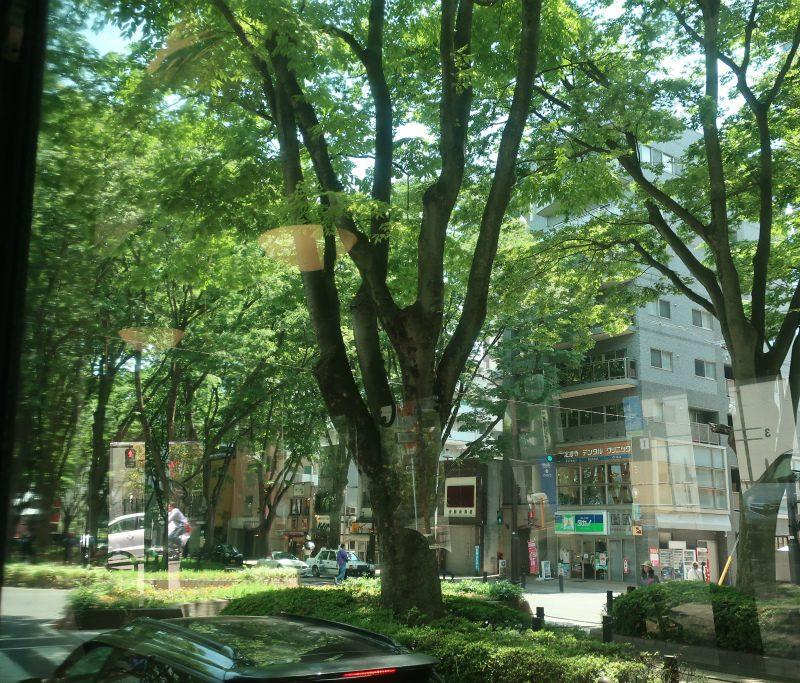 仙台、会津、日光、横浜への旅⑦